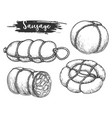 set isolated sausage and meat roulade vector image vector image