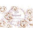 watercolor white roses background vector image vector image
