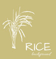 background rice1eps vector image vector image