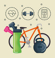 healthy lifestyle and sports icons vector image