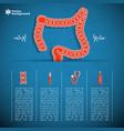 human organs concept vector image vector image