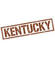 kentucky brown square stamp vector image vector image
