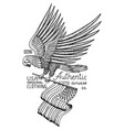 native eagle american wild bird old label and vector image vector image
