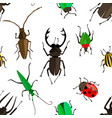 seamless pattern with colorful insects vector image vector image