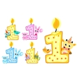 Set Happy First Birthday Candle and Animals vector image