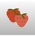 Sticker flat berries vector image