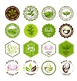 Tea stamps collection Green and black tea badges vector image vector image