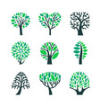 trees with green leaves on branches set isolated vector image