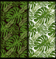 tropical pattern palm summer green palm leaves vector image vector image