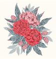 vintage floral bouquet vector image vector image