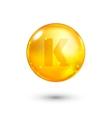 Vitamin K glitter gold icon vector image vector image