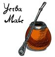 yerba mate calabash vector image