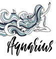 zodiac sign of aquarius astrology vector image