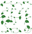 set of ecological leaf arrow on white background vector image