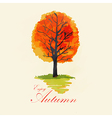 Abstract autumn tree vector image vector image