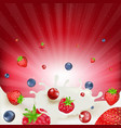 berry mix border vector image vector image