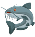 Cartoon catfish vector image