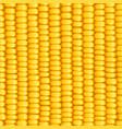 corn cob organic food vector image vector image