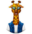 giraffe hipster in a jacket and sunglasses vector image vector image
