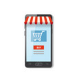 mobile shopping e-commerce online supermarket vector image