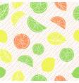 multicolored hand drawn citrus fruit on drop vector image vector image
