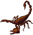realistic scorpion cartoon in vector image