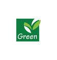 square green leaf logo vector image