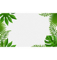 summer tropical leaves frame isolated transparent vector image vector image