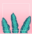 tropical background design banana leaves vector image
