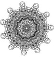 vecor drawing of floral round lace mandala vector image vector image
