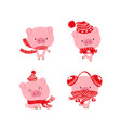 christmas pinky piggy with a hat new year vector image vector image