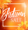 hand drawn autumn lettering sale label with leaves vector image vector image