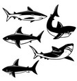 set shark on white background design element vector image vector image
