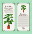 vintage label with monstera plant vector image vector image