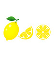 colorful whole half and slice lemon with green vector image vector image