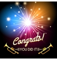 congrats fireworks vector image