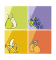 delicious fruits cards vector image vector image
