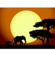 Elephants at sunset vector | Price: 1 Credit (USD $1)
