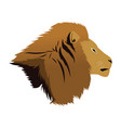 head lion african proud powerful nobility vector image