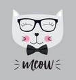 little cute cat vector image vector image