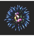 New firework sign vector image vector image