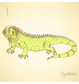 Sketch fancy iguana in vintage style vector image vector image