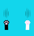 cat claw scratching set black and white paw print vector image vector image