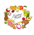 colorful natural tropical fruits round concept vector image vector image