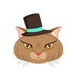 elegant cat wearing black hat funny cartoon vector image vector image