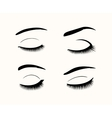 eyelashes and eyebrows silhouettes vector image vector image