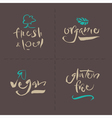Organic local gluten vegan vector image