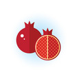 pomegranate icon flat style tropical fruits vector image vector image