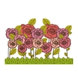 rose flowers icon image vector image vector image