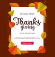 thanks giving sale poster special price off vector image vector image
